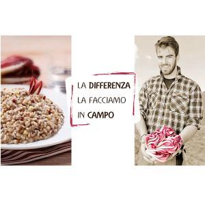 federadicchio
